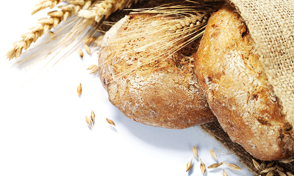 You Asked, We Answered: Bread Recommendations!