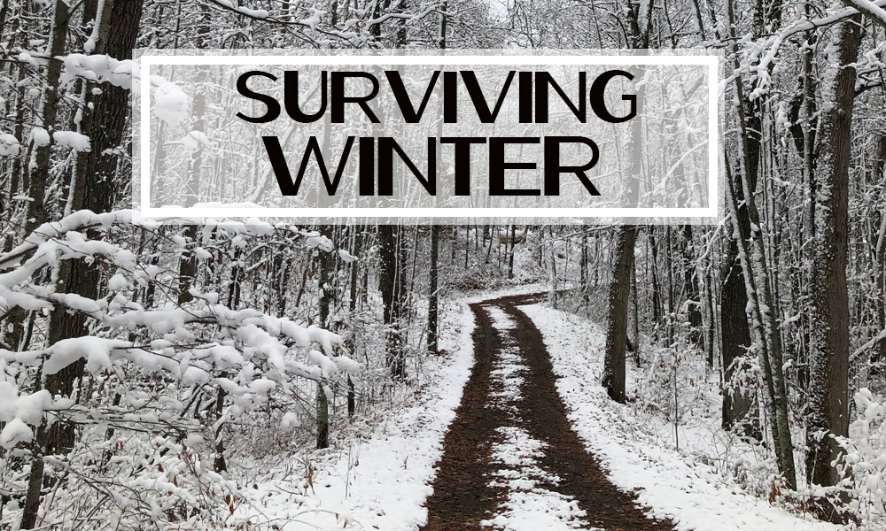 Surviving the SAD – Seasonal Affective Disorder